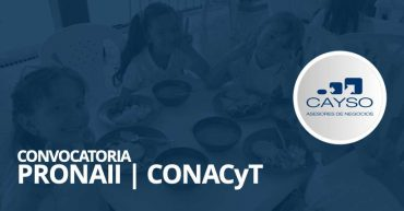 Convocatoria CONACYT PRONAII