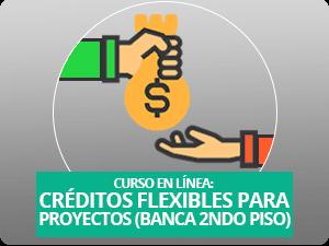 Dale un vistazo a nuestro curso: Créditos Flexibles. En  versión en línea